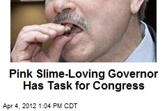 Pink Slime-Loving Governor Has Task for Congress