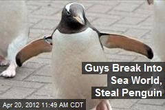 Guys Break Into Sea World, Steal Penguin