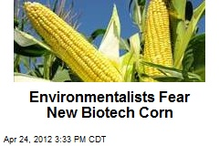 Environmentalists Warn Against New Biotech Corn