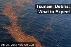 Tsunami Debris: What to Expect