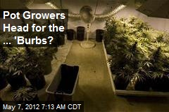 Pot Growers Shifting to Suburbia