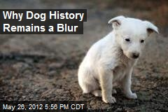 Why Dog History Remains a Blur