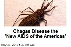 Chagas Disease 'New AIDS of the Americas'