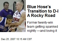 Blue Hose's Transition to D-I A Rocky Road