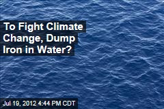 To Fight Climate Change, Dump Iron in Water?