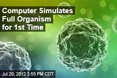 Computer Simulates Full Organism for 1st Time