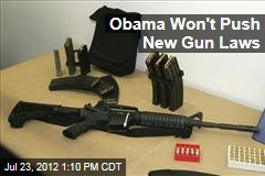 Obama Won't Push New Gun Laws