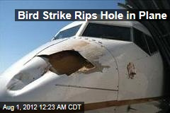 Bird Strike Rips Hole in Plane