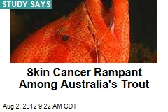 Skin Cancer Rampant Among Australia's Trout