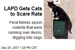 LAPD Gets Cats to Scare Rats