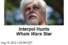 Interpol Hunts Whale Wars Star