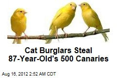 Cat Burglars Steal 87-Year-Old's 500 Canaries