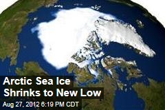 Arctic Sea Ice Shrinks to New Low