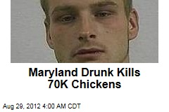 Maryland Drunk Kills 70K Chickens