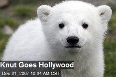 Knut Goes Hollywood