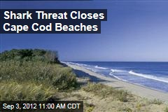 Shark Threat Closes Cape Cod Beaches