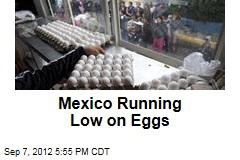 Mexico Running Low on Eggs