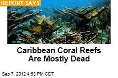 Caribbean Coral Reefs Are Mostly Dead