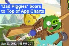 'Bad Piggies' Soars to Top of App Charts