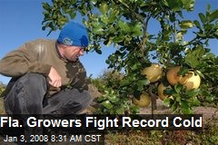 Fla. Growers Fight Record Cold