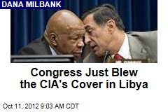 Congress Just Blew the CIA's Cover in Libya