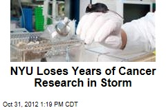 NYU Loses Years of Cancer Research in Storm