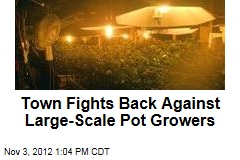 Town Fights Back Against Large-Scale Pot Growers