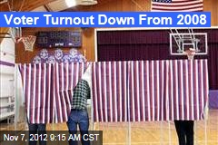 Voter Turnout Down From 2008
