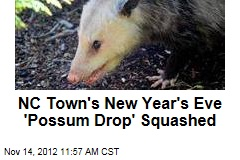 NC Town's New Year's Eve 'Possum Drop' Squashed