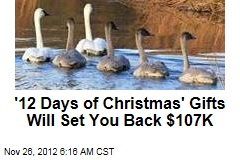 '12 Days of Christmas' Gifts Will Set You Back $107K