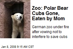 Zoo: Polar Bear Cubs Gone, Eaten by Mom