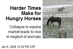 Harder Times Make for Hungry Horses