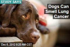 Dogs Can Smell Lung Cancer