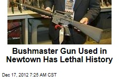 Bushmaster Gun Used in Newtown Has Lethal History