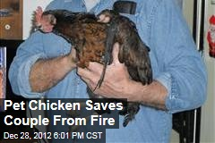 Pet Chicken Saves Couple From Fire