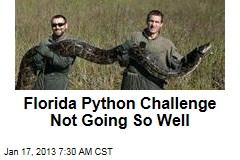 Florida Python Challenge Not Going So Well