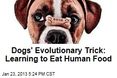 Dogs' Evolutionary Trick: Learning to Eat Human Food