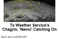 To Weather Service's Chagrin, 'Nemo' Catching On