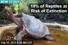 19% Reptiles at Risk of Extinction