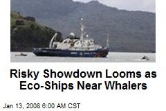 Risky Showdown Looms as Eco-Ships Near Whalers