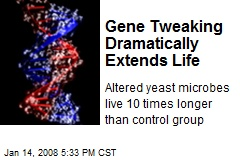 Gene Tweaking Dramatically Extends Life