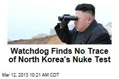 Watchdog Finds No Trace of North Korea's Nuke Test