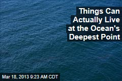 Things Can Actually Live at the Ocean's Deepest Point