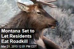 Montana Set to Let Residents Eat Roadkill