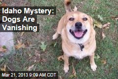 Idaho Mystery: Dogs Are Vanishing