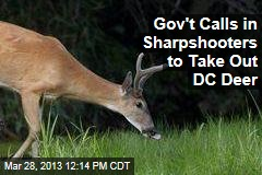 Gov't Calls in Sharpshooters to Take Out DC Deer