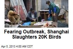 Fearing Outbreak, Shanghai Slaughters 20K Birds