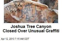 Behind Joshua Tree Graffiti: Social Media?