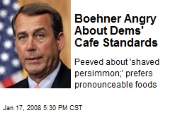 Boehner Angry About Dems' Cafe Standards