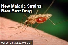 New Malaria Strains Beat Best Drug